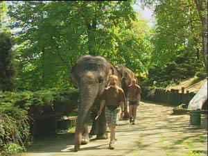 Zoo Usti